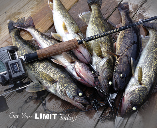 Get Your LIMIT Today!